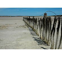 The dying Coorong Lake Albert Photographic Print