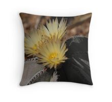 Desert Flower Throw Pillow