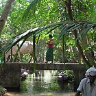 Daily life on the backwaters by indiafrank