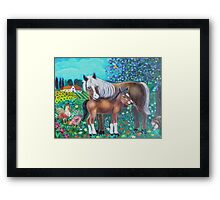 A mare and her foal. Framed Print