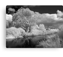 Barrabool River 2 Metal Print