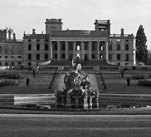 Witley  by Spencer Trickett