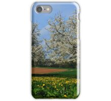Spring in the Country iPhone Case/Skin