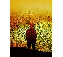 Winter Burn Photographic Print