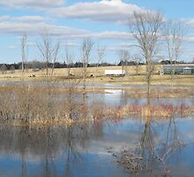 River Floods The Farmlands by Tracy Faught