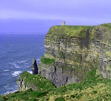 Cliffs of Moher by Gary  Collins