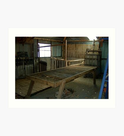 Hope Cottage Museum Shearing Shed Art Print