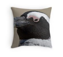 African penguin portrait Throw Pillow