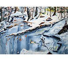 winter sanctuary Photographic Print