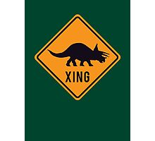 Prehistoric Xing - Triceratops Photographic Print