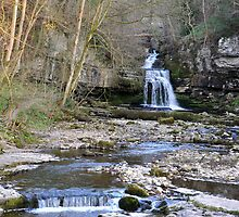 West Burton Falls by Lindamell