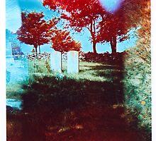 Lonely Headstones by Nicole Gesmondi