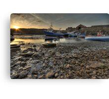 Low Tide Canvas Print