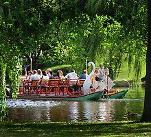 Swan Boat by vgbg