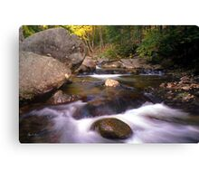 Rocks Highlight Stinson Brook   Canvas Print