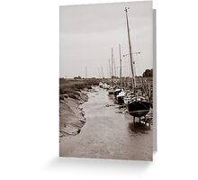 High and Dry, Gibraltar Point, Lincolnshire Greeting Card