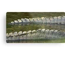 Alligator tails Metal Print