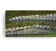 Alligator tails Canvas Print