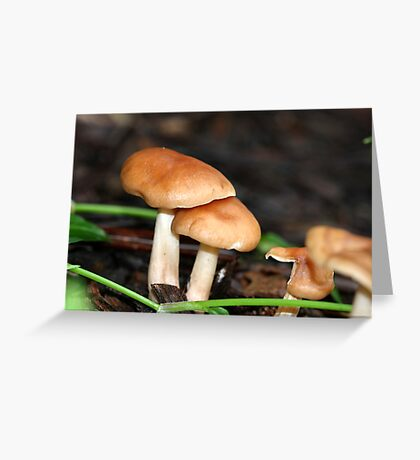 Fungi season 1 Greeting Card