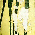 Broken Paragons by Nicole Gesmondi