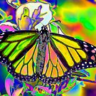 Psychedelic Monarch by Donna Adamski