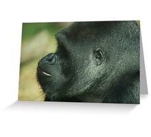 West Lowland Silverback Gorilla 2 Greeting Card