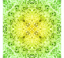 """""""Spirit of India: Fleur-Web"""" in grass green and yellow Photographic Print"""