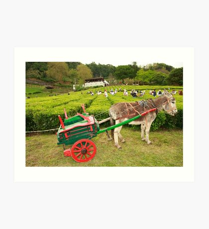 Donkey and cart Art Print