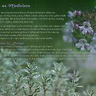 Herbs as Medicine - Thyme by cdwork