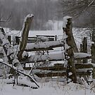 Corner Fence in an April Snow.. by Larry Llewellyn
