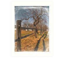 Wooden Fence Art Print