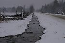 A Country Road during an April Snow... by Larry Llewellyn