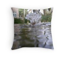 Eye Level Throw Pillow