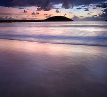 Muttonbird Island, Coffs Harbour by Alex  Cowley