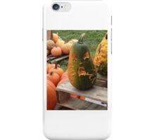 gourd iPhone Case/Skin