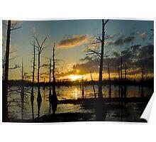 Black Bayou Sunset Poster