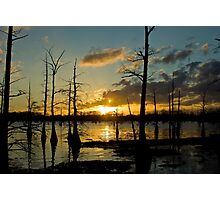Black Bayou Sunset Photographic Print