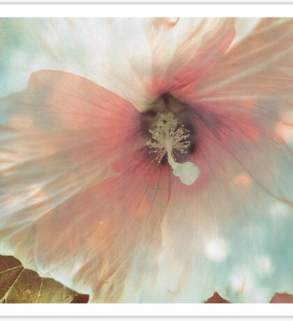 Dreamlike Hibiscus Sticker