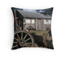 'Old shack' Throw Pillow
