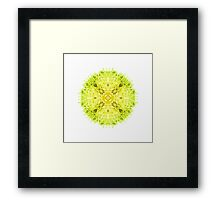 """Spirit of India: Mandala Fleur-Web"" in grass green and yellow Framed Print"
