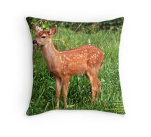 2008's BEAUTIFUL CROP Throw Pillow