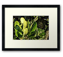 Not Really as Angry as I Look Framed Print