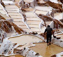 Salineras de Maras - Peru by Lisa Germany