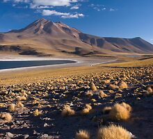 Lagunas Miñiques y Miscanti - Chile by Lisa Germany