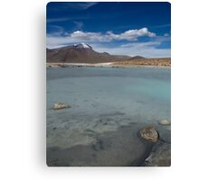 Salar de Surire - Chile Canvas Print
