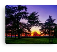 Sunset landscape Canvas Print