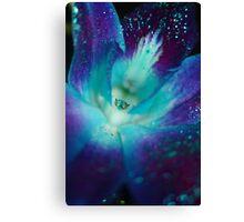 BLUE SINGAPORE ORCHID Canvas Print