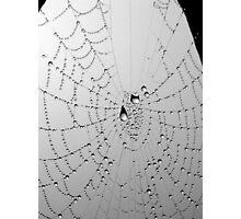web drops Photographic Print