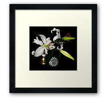 Fresh Lilies and Old Brass Framed Print