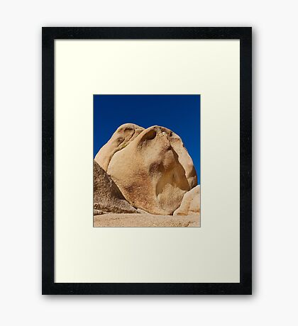 The Snob. Framed Print